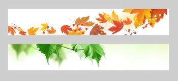 Bandeira do outono e da mola Fotos de Stock Royalty Free