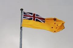 A bandeira do regulador de Victoria aumentou sobre a torre do belvedere da casa do governo, Melbourne Fotos de Stock