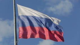Bandeira do russo video estoque