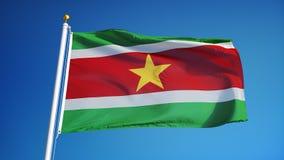 A bandeira do Suriname no movimento lento deu laços sem emenda com alfa filme