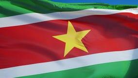 A bandeira do Suriname no movimento lento deu laços sem emenda com alfa video estoque