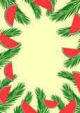 Bandeira do verão com as folhas da palmeira e fatias verdes da melancia ilustração do vetor