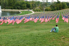 Bandeira dos E.U. que acena fora do museu de arte de St Louis Imagem de Stock Royalty Free