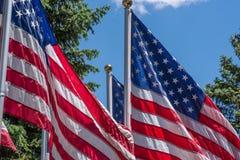 Bandeira dos Estados Unidos que acena no vento no dia de verão Fotografia de Stock Royalty Free