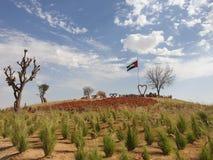 Bandeira dos UAE e para amar corações com natureza fotografia de stock royalty free
