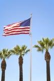 Bandeira e palmeiras dos E.U. Fotografia de Stock Royalty Free