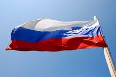Bandeira eslovena no vento Imagem de Stock