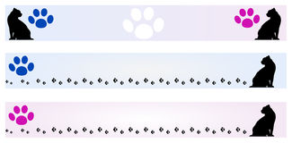 Bandeira - frames do gato Imagens de Stock