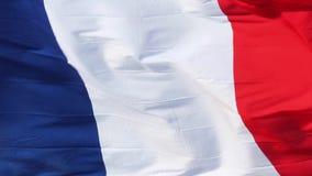 Bandeira francesa video estoque