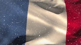 Bandeira francesa que acena na neve vídeos de arquivo