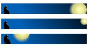 Bandeira - gato em telhados Imagens de Stock