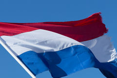 Bandeira holandesa Imagem de Stock Royalty Free