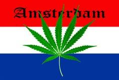 Bandeira holandesa com folha da marijuana Fotografia de Stock Royalty Free