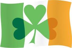 Bandeira irlandesa & shamrock irlandês Imagem de Stock