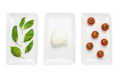 Bandeira italiana do alimento, branco do tomate do mozzarella da manjericão Imagens de Stock Royalty Free