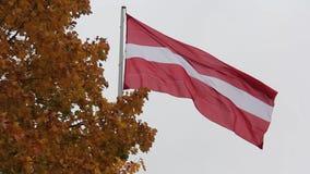 Bandeira letão no outono ilustração do vetor