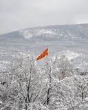 Bandeira macedônia que aumenta das árvores nevado Fotos de Stock Royalty Free