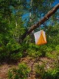 A bandeira marca o ponto de verificação para a corrida orienteering pendura na árvore imagem de stock