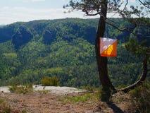 A bandeira marca o ponto de verificação para a corrida orienteering pendura na árvore fotografia de stock