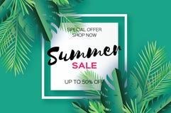 Bandeira na moda do molde da venda do verão Folhas de palmeira tropicais da arte do corte do papel, plantas exotic hawaiian Espaç ilustração stock