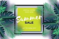 Bandeira na moda do molde da venda do verão Folhas de palmeira tropicais da arte do corte do papel, plantas exotic hawaiian Espaç ilustração royalty free