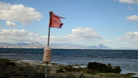 Bandeira na praia video estoque