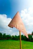 Bandeira no parque Fotografia de Stock