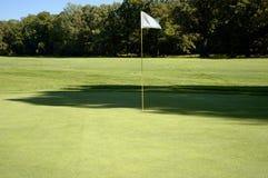 Bandeira no verde Foto de Stock Royalty Free