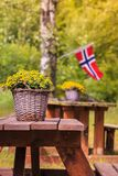Bandeira norueguesa e local verde do piquenique Imagem de Stock