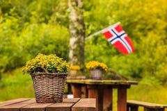 Bandeira norueguesa e local verde do piquenique Imagem de Stock Royalty Free