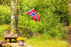 Bandeira norueguesa e local verde do piquenique Fotos de Stock