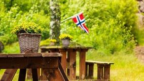Bandeira norueguesa e local verde do piquenique Imagens de Stock Royalty Free