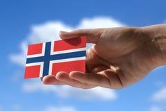 Bandeira norueguesa pequena Fotografia de Stock