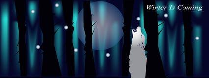 Bandeira para a tampa do facebook com o lobo e a lua da floresta da noite Imagens de Stock