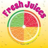 Bandeira para a toranja do suco, laranja, cal, limão Imagens de Stock