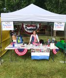 Bandeira política local de América do eleitor vertical fotografia de stock