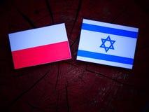 Bandeira polonesa com bandeira israelita em um coto de árvore isolado Foto de Stock Royalty Free