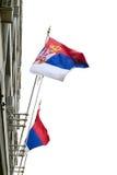 Bandeira sérvio Fotografia de Stock Royalty Free