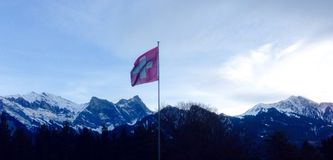 Bandeira suíça Imagem de Stock Royalty Free