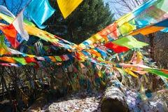 Bandeira tibetana da oração Fotografia de Stock
