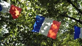 Bandeira três francesa que acena no movimento lento através das árvores filme