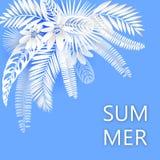 Bandeira tropical com folhas de palmeira verdes no fundo branco Cartaz sazonal no estilo na moda do corte do papel Molde do proje ilustração stock