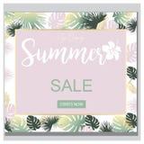 Bandeira tropical das flores da venda do verão, para o cartaz do disconto, venda da forma, fundos, tshirts, descansos, no vetor Fotografia de Stock Royalty Free