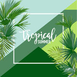 Bandeira tropical do verão das palmas, fundo gráfico, convite floral exótico, inseto ou cartão Primeira página moderna ilustração do vetor