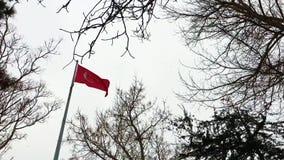 Bandeira turca em um dia nevado video estoque