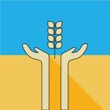 Bandeira ucraniana com paz, mão e trigo Imagens de Stock Royalty Free