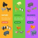 A bandeira Vecrtical dos animais selvagens 3d ajustou a vista isométrica Vetor ilustração stock