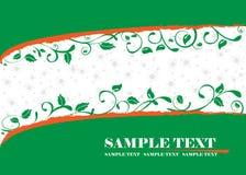 Bandeira verde Imagem de Stock Royalty Free