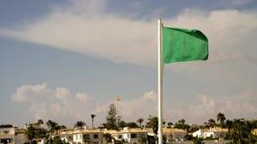 Bandeira verde da segurança vídeos de arquivo