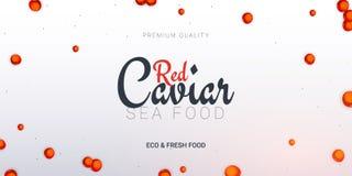 Bandeira vermelha do caviar Fundo delicioso do marisco Ilustração do vetor do caviar Alimento luxuoso natural e saudável Projeto  ilustração stock